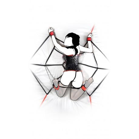 Contrainte SM : Toile d'araignée pour lit