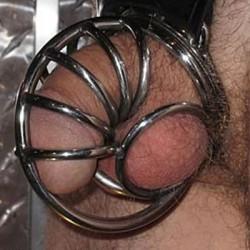 Cage de chasteté : Coquille escargot